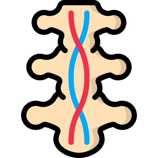 ostéopathe libercourt sciatique, lombalgie